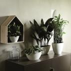 Orchidee vasque ovale haute
