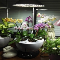 Jardiniere hydroponique